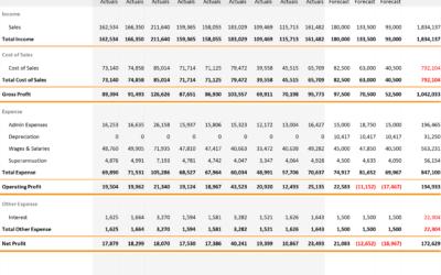 Profit & Loss Forecast